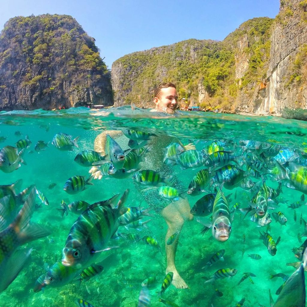 Swimming with thousands fishes ?????? Koh Phi Phi Leh - Thailand. Credits ?@funtravels?