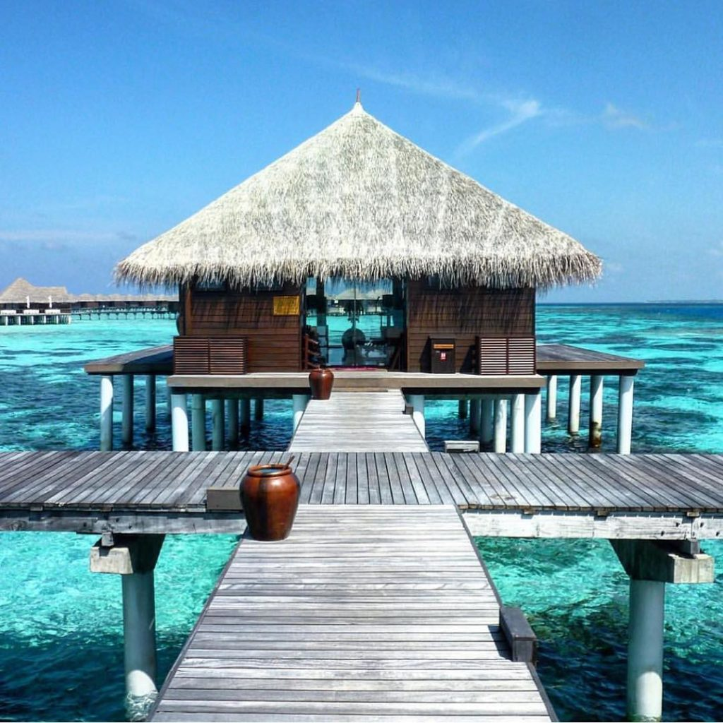 Coco Palm Bodhu Hithi - Maldives ?????? Credits ?@travel_a_little_luxe?